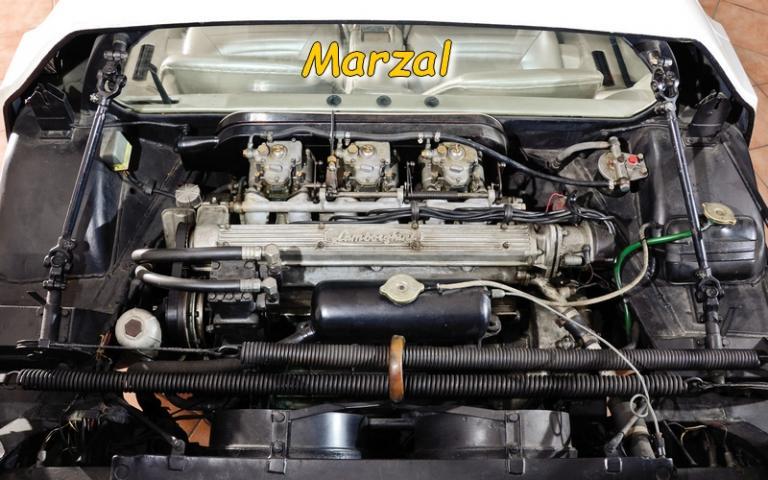 Le moteur de la Marzal